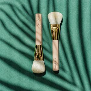 Brushs